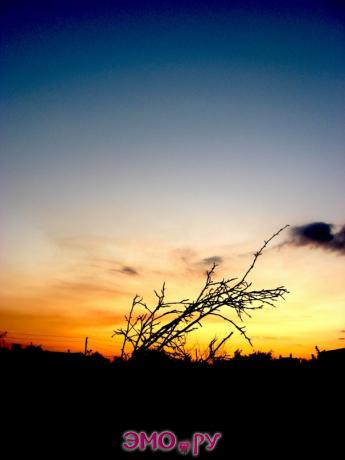 Одесса - закат