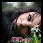 текст песни эмо